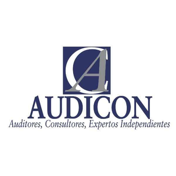 Desarrollo Web de Consultoría - Audicon