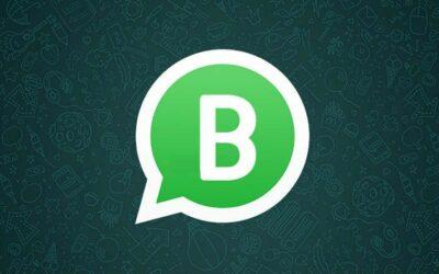 Qué es WhatsApp Business y como tenerlo como chat en tu web