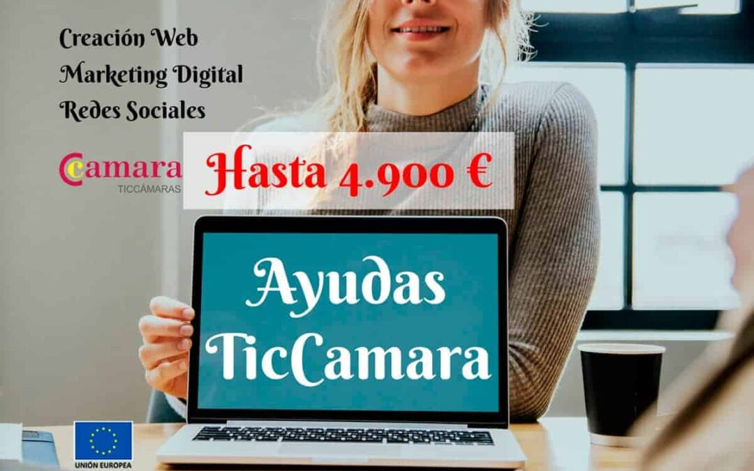 Subvenciones-y-Ayudas-TicCamara2019