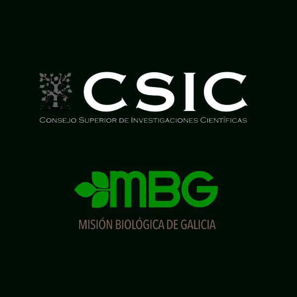 Desarrollo Web de Grupos de Investigación - CSIC - MBG